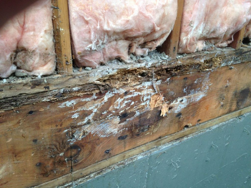 Construction Defect Repair Lada Enterprises